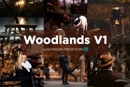 woodlands-lightroom-presets-banner